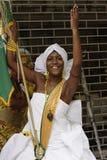 Uliczni wykonawcy podczas Karnawałowego festiwalu Rio De Janeiro, Fotografia Royalty Free