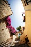Uliczny kwiat na greckim starym miasteczku Zdjęcia Stock