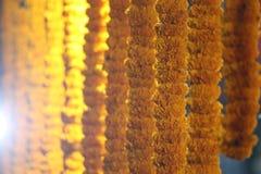 Uliczny Merigold mąki sklep w Zachodnim Bengalia obraz royalty free