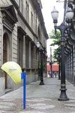 Uliczny miasto Santos Zdjęcie Royalty Free