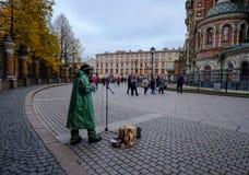 Uliczny muzyk w Świątobliwym Petersburg fotografia royalty free