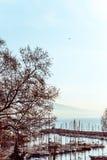 Uliczny widok Naples schronienie z łodziami Obrazy Royalty Free