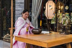 Uliczny wykonawca bawić się Chińskiego instrument Zdjęcie Royalty Free