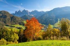 Ulistnienie w Włoskich Alps Obraz Stock
