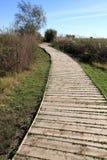 Ullal de Baldovi wetland Valencia province Spain Royalty Free Stock Image