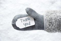 Ullhandsken, etiketten, snö, text tackar dig Royaltyfri Foto