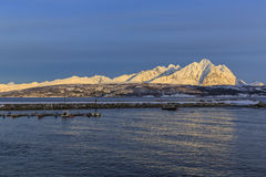 Ullsfjord in front of the Lyngen alps Royalty Free Stock Photo