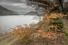 Ullswater English Lake District Cumbria. Looking towards Glenridding at the southwest end of the lake Stock Photo