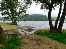 Ullswater Lake. I thought I`d try and be a little creative and get some of the surrounding plants in with the lake Royalty Free Stock Photo