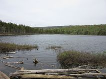 Ulowy ślad, Acadia park narodowy, magistrala obraz stock