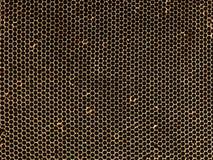 Ulowy wzór Textured Honeycomb zakończenie up Obraz Royalty Free