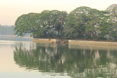 Ulsoor湖 库存图片