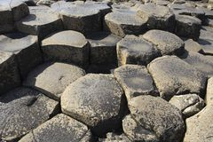 The Giant' s Causeway. Ulster Ireland, - July 20, 2016: Polygonal basalt lava rock columns of the Giant`s Causeway on the north coast of County Antrim stock image