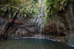 Ultima cascata della traccia di escursione di Levada di venticinque fontane, Madera Fotografie Stock Libere da Diritti