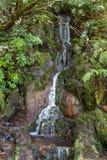 Ultima cascata della traccia di escursione di Levada di venticinque fontane, Madera Immagini Stock Libere da Diritti