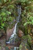Ultima cascata della traccia di escursione di Levada di venticinque fontane, Madera Fotografia Stock Libera da Diritti