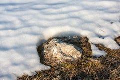 Ultima neve Fotografie Stock Libere da Diritti