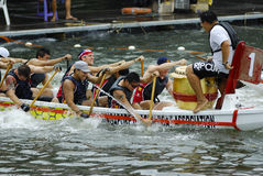 Ultimate DragonTug in Singapore. Ultimate DragonTug Showdown, Singapore River on 10 May Royalty Free Stock Images