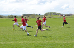Ultimate Frisbee Battle. Ultimate Frisbee players battle in Bozeman Montana in the recent annual bozo tournament. The sport is currently one of the fastest Royalty Free Stock Photo