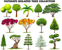 Ultimate isolated tree collection set Stock Photos