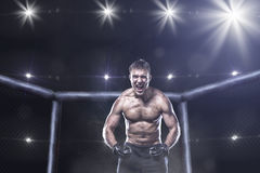 Ultimate mma fighter in a octagon cage. Fighter in a mixed fight cage in rage shouting loud royalty free stock photo