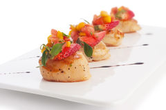 Ultimate Scallop Stock Images