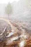 Ultime precipitazioni nevose immagini stock