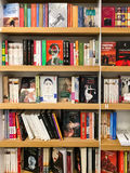 Ultimi romanzi famosi da vendere nel deposito di libro delle biblioteche immagini stock libere da diritti