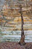 Ultimo supporto in canyon di Illinois Fotografia Stock Libera da Diritti
