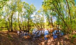 Ultra bred landskappanorama av sjön Arkivbilder