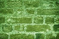 Ultra green Brick wall texture, cement background for web site or mobile devices.  Royalty Free Stock Photo