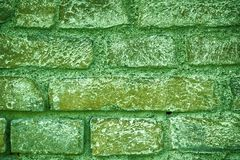 Ultra green Brick wall texture, cement background for web site or mobile devices.  Stock Photo