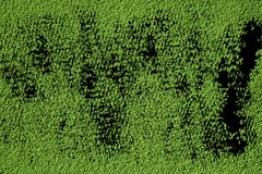 Ultra green Concrete texture wall texture, cement grunge background or stone rough surface.  stock image