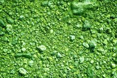 Ultra green Ground like on Mars, land texture, sand surface, stone background.  Stock Photography