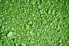 Ultra green Ground texture, sand surface, stone background.  Royalty Free Stock Photo