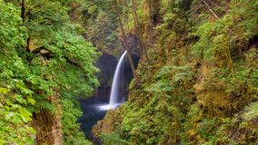 Ultra High Definition UHD 4k Time Lapse Movie of Metlako Falls in Eagle Creek along Columbia River Gorge in Oregon stock video footage