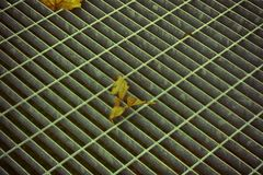 Ultra orange quadratische Metallluke in der städtischen Pflasterung, im Abwasserkanalkanaldeckel mit Markierungslinien und im Bla Lizenzfreies Stockbild