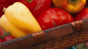 Ultra primer de una señora joven atractiva Holding Basket de Vegetables_02 orgánico metrajes