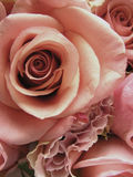 Ultra Romantic Brides Bouquet. Early color photographic reproduction/close up of an awesome brides bouquet with pastel colored pink roses and pink ranunculus Stock Photo