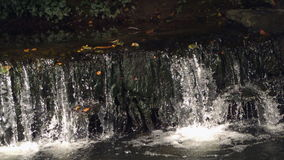 Ultra slow motion of small cascade. Having leaves in the water stock video footage