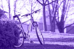 Ultra violet bicycle in the park on a bright summer spring day outdoor Stock Images
