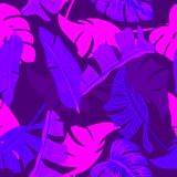 Ultra violet seamless pattern of tropical leaves of palm tree. Vector background Royalty Free Stock Photography