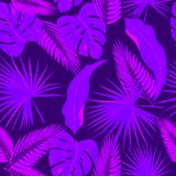 Ultra violet seamless pattern of tropical leaves of palm tree. V. Ector background Stock Photo