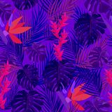 Ultra violet seamless pattern of tropical leaves of palm tree. V. Ector background Royalty Free Stock Photography