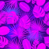 Ultra violet seamless pattern of tropical leaves of palm tree. Vector background Royalty Free Stock Photo