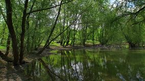 Ultra wide landscape panorama of the lake. Bundek in Zagreb. Under the trees stock video footage