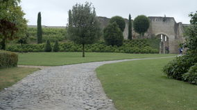 An ultra-wide shot of a historical french garden stock video footage