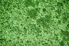 Ultra zielona tynku betonu tekstura, kamień powierzchnia, kołysa krakingowego tło dla pocztówki Zdjęcie Royalty Free
