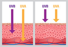 ULTRAFIOLETOWY, ultrafioletowy a, i ultrafioletowa b ochrona Fotografia Stock