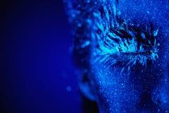 Ultrafioletowy zima portret Zdjęcia Royalty Free